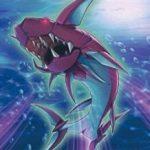 【白闘気白鯨(ホワイト・オーラ・ホエイル)が水属性を救う!?】グレイドルjr.からの選択肢が増えた!